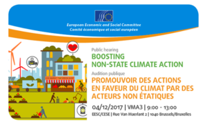 Public hearing: Boosting non-state climate action